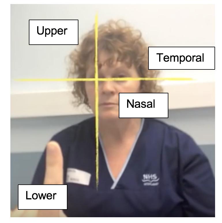 visual test quadrants