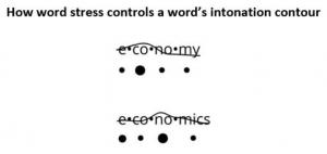 Word Stress Controls an Intonation Contour