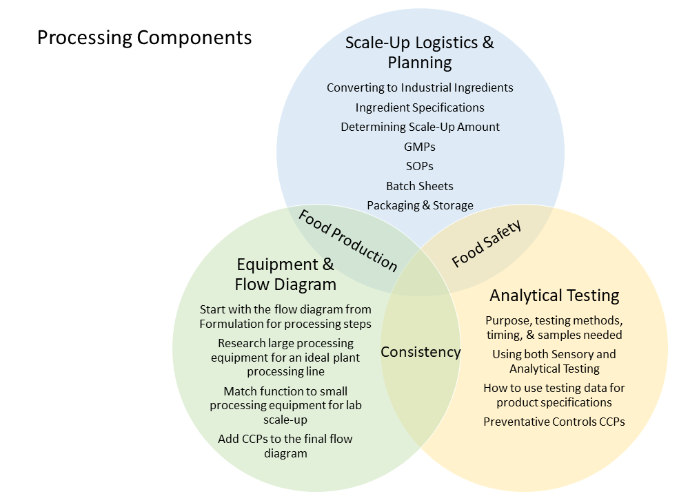 Processing tasks as a Venn diagram including Scale-Up Logistics and Planning, Equipment and Flow Diagram, and Analytical Testing