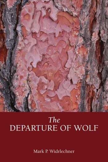 Cover image for The Departure of Wolf